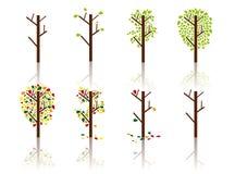 Processo de uma árvore - imagem do vetor Foto de Stock