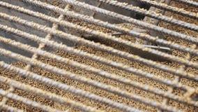 Processo di fabbricazione della fabbrica Mulini schiacciati del grano in apparecchiatura di fresatura attraverso grata video d archivio