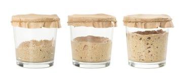 Processo di fermentazione del lievito naturale casalingo del pane di segale isolato fotografie stock