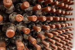 Processo di invecchiamento del vino Invecchiare delle bottiglie di vino, coperto in polvere ed in muffa, in una cantina tradizion immagine stock