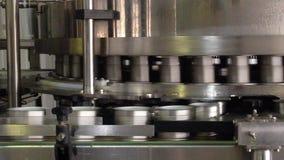 Processo di lavoro della produzione dei piselli sul conservificio Piselli maturi che lavano in acqua prima della conservazione video d archivio