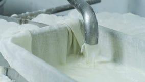 Processo di produrre formaggio archivi video