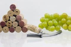 Processo do vinho imagem de stock