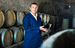 Processo invecchiare continuante maschio di vino immagini stock