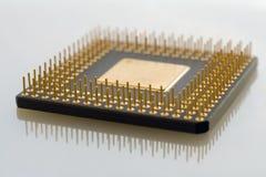 processor Royaltyfri Fotografi