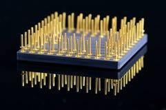 Processor. Stock Photo
