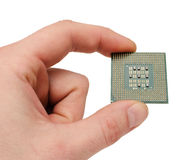 Processor. The processor on a hand of the person on a white background Stock Images