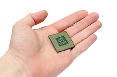 Processor. The processor on a hand of the person on a white background Stock Photography