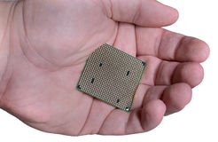 The processor in the person`s hand.  Stock Photos