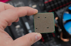The processor in the person`s hand.  Stock Images