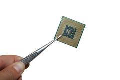 Processor in the tweezers Stock Image