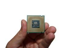 Processor in the tweezers Stock Photography