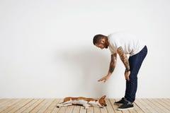 Processus de formation de chien à la maison images stock