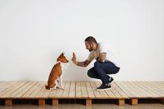 Processus de formation de chien à la maison photo stock