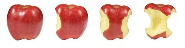 Processus de manger la pomme rouge d'isolement sur le fond blanc Pommes Snacked collage sur le fond blanc photographie stock libre de droits