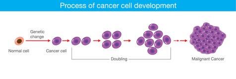 Processus du développement de cellule cancéreuse Illustration médicale Photographie stock