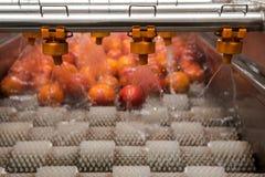 Processus orange de nettoyage Photo libre de droits