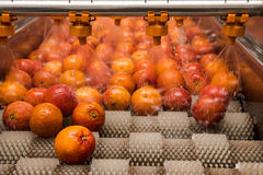 Processus orange de nettoyage Photographie stock