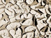 Prochaine sécheresse Images libres de droits