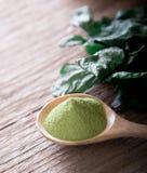 Prochowa zielona herbata i zielona herbata liście Zdjęcie Stock