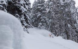 Prochowy narciarstwo Obraz Royalty Free