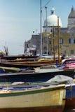 PROCIDA, ITALIA, 1970 - la cupola della chiesa della S Della Pietà di Maria e la st Giovanni Battista domina le barche asciutte immagine stock libera da diritti