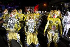 Procissão da dança do tigre Fotografia de Stock Royalty Free