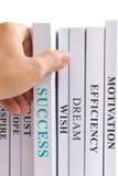Procurando o sucesso. Imagem de Stock Royalty Free