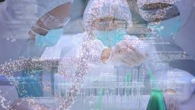 Prodotti chimici mescolantesi dello scienziato in provette stock footage