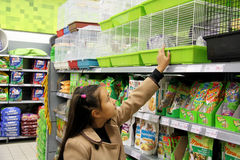 Prodotti dell'animale domestico Immagini Stock Libere da Diritti