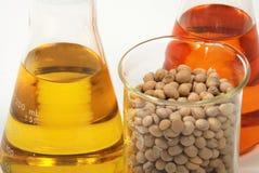 Prodotti dell'etanolo dai semi della soia Fotografia Stock Libera da Diritti