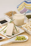 Prodotti della soia Immagine Stock Libera da Diritti