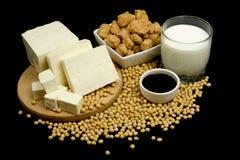 Prodotti della soia Immagini Stock Libere da Diritti