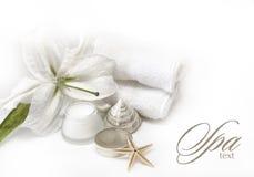 Prodotti della stazione termale di Wellness Fotografia Stock Libera da Diritti