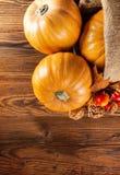 Prodotti di agricoltura di autunno su legno Immagine Stock