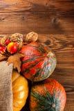 Prodotti di agricoltura di autunno su legno Fotografia Stock