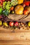 Prodotti di agricoltura di autunno su legno Fotografie Stock
