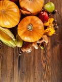 Prodotti di agricoltura di autunno su legno Immagine Stock Libera da Diritti