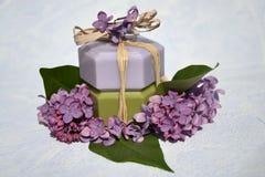 Prodotti di bellezza, aromaterapia Fotografie Stock