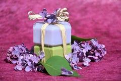 Prodotti di bellezza. Cosmetici Fotografia Stock Libera da Diritti