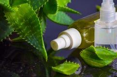 Prodotti di bellezza per la stazione termale con aloe vera Fotografia Stock Libera da Diritti