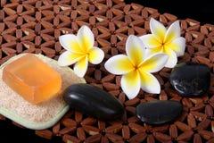 Prodotti di bellezza tropicali della stazione termale di giorno Immagini Stock