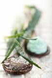 Prodotti di cura di pelle dell'aloe Fotografia Stock