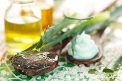 Prodotti di cura di pelle dell'aloe Immagine Stock