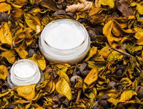 Prodotti di cura di pelle organici Fotografia Stock