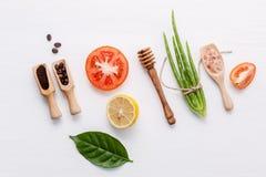 Prodotti di cura di pelle di erbe naturali Ver dell'aloe degli ingredienti di vista superiore Fotografie Stock Libere da Diritti