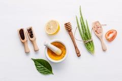 Prodotti di cura di pelle di erbe naturali Ver dell'aloe degli ingredienti di vista superiore Immagini Stock Libere da Diritti