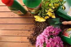 Prodotti di giardinaggio dei contenitori e delle bottiglie sulla vista superiore di legno Fotografia Stock