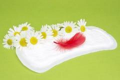 Prodotti di igiene femminili Camomille sui cuscinetti quotidiani mestruali sanitari Cura personale, foto di concezione di igiene  Fotografia Stock