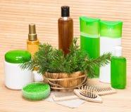 Prodotti ed accessori cosmetici organici e naturali per cura di capelli Fotografia Stock Libera da Diritti
